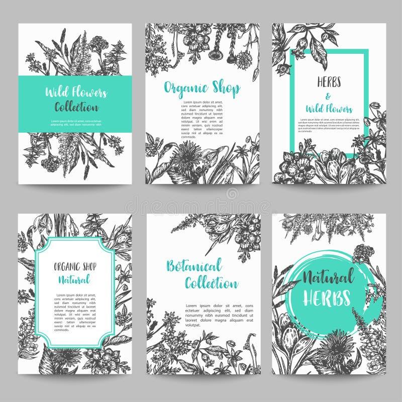 Σύνολο κάρτας με συρμένα τα χέρι χορτάρια και άγρια εκλεκτής ποιότητας συλλογή λουλουδιών του Floral διανύσματος γαμήλιας πρόσκλη ελεύθερη απεικόνιση δικαιώματος