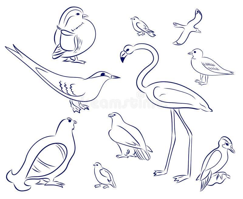 Σύνολο κινούμενων σχεδίων πουλιών Φλαμίγκο, γλάρος, πάπια, δρυοκολάπτης, μαύρος αγριόγαλλος, αετός, περιστέρι, σπουργίτι, στέρνα  ελεύθερη απεικόνιση δικαιώματος