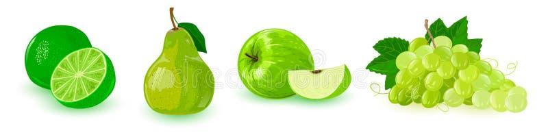 Σύνολο με τα πράσινα ώριμα φρούτα στη γραμμή: μήλο, δέσμη των σταφυλιών, αχλάδι, ασβέστης ελεύθερη απεικόνιση δικαιώματος