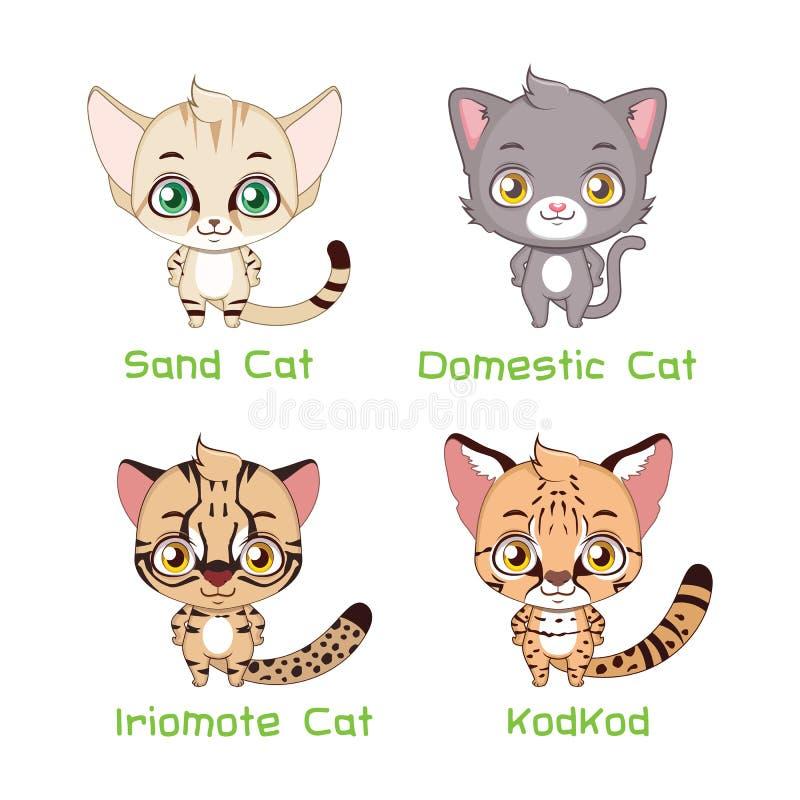 Σύνολο μικρού - μεγέθους είδη γατών ελεύθερη απεικόνιση δικαιώματος