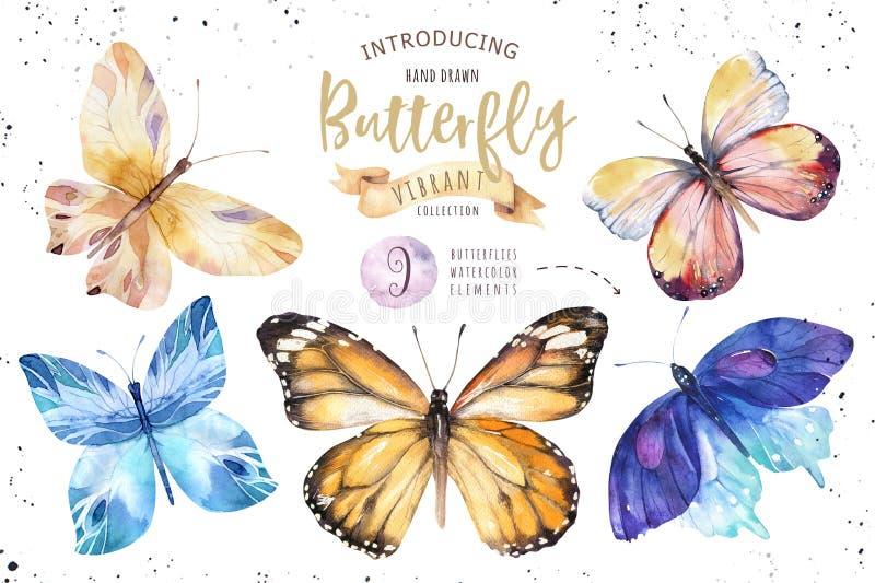 Σύνολο πεταλούδας boho watercolor Εκλεκτής ποιότητας απομονωμένη καλοκαίρι τέχνη άνοιξης Απεικόνιση Watercolour γαμήλια κάρτα σχε απεικόνιση αποθεμάτων