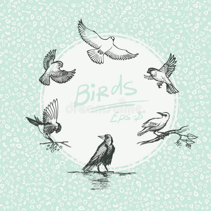 Σύνολο πουλιού σκίτσων επίσης corel σύρετε το διάνυσμα απεικόνισης ελεύθερη απεικόνιση δικαιώματος