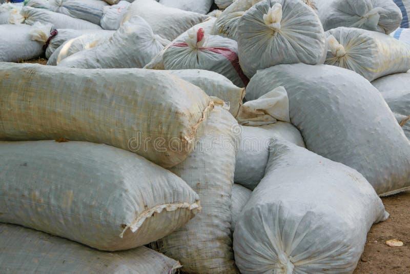 Σύνολο σάκων κάνναβης των προϊόντων συγκομιδών που συσσωρεύονται στο έδαφος στοκ εικόνες