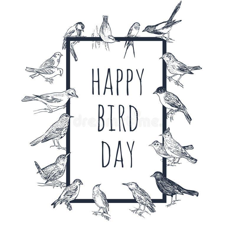 Σύνολο συρμένων χέρι πουλιών Passerine απεικόνιση αποθεμάτων