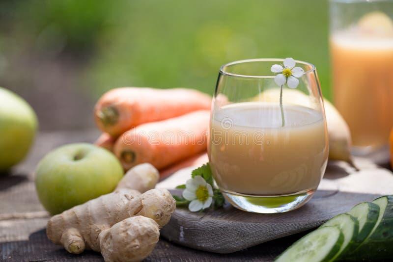 Σύνολο τροπικού ζωηρόχρωμου και φρέσκου καλοκαιριού φρούτων, υγιή τρόφιμα πολλά ώριμα φρούτα που αναμιγνύονται στο πράσινο φυσικό στοκ φωτογραφίες με δικαίωμα ελεύθερης χρήσης