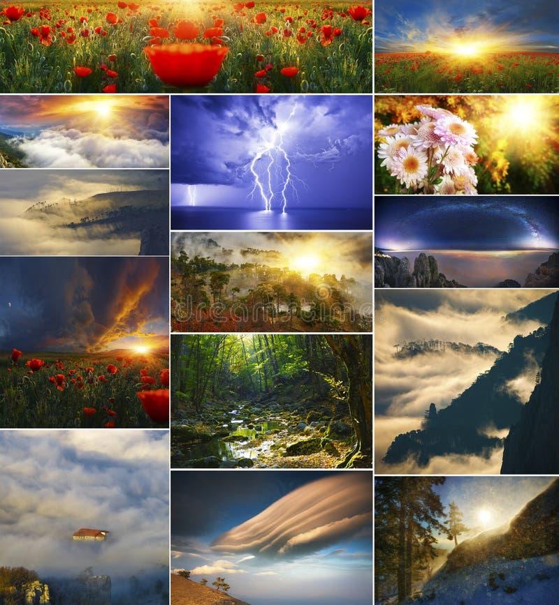 Σύνολο υποβάθρων της φύσης σε τέσσερις εποχές στοκ εικόνες
