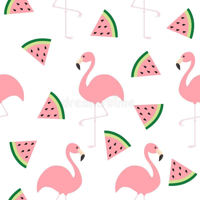 Σύνολο φλαμίγκο Άνευ ραφής εξωτικό τροπικό πουλί σχεδίων Σπόροι φετών τριγώνων καρπουζιών Ζωική συλλογή ζωολογικών κήπων Χαριτωμέ ελεύθερη απεικόνιση δικαιώματος