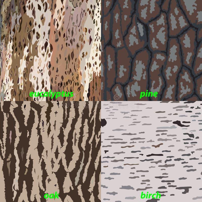 Σύνολο φλοιού δέντρων - ευκάλυπτος, βαλανιδιά, πεύκο, σημύδα για το υπόβαθρο, που απομονώνεται ελεύθερη απεικόνιση δικαιώματος