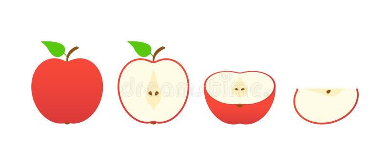 Σύνολο φρούτων Συλλογή θερινών φρούτων Μήλο φρούτων Χορτοφάγος και τρόφιμα οικολογίας r απεικόνιση αποθεμάτων