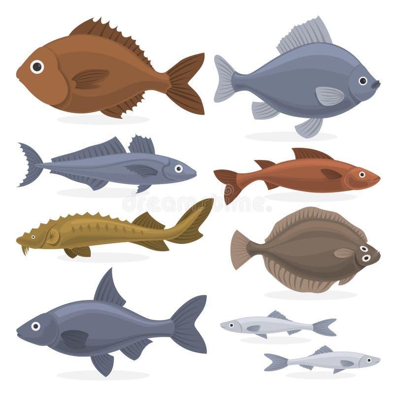 Σύνολο ψαριών Συλλογή της υδρόβιας πανίδας διανυσματική απεικόνιση