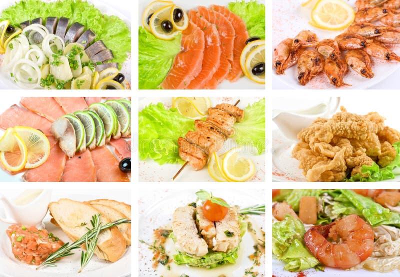 σύνολο ψαριών στοκ εικόνα