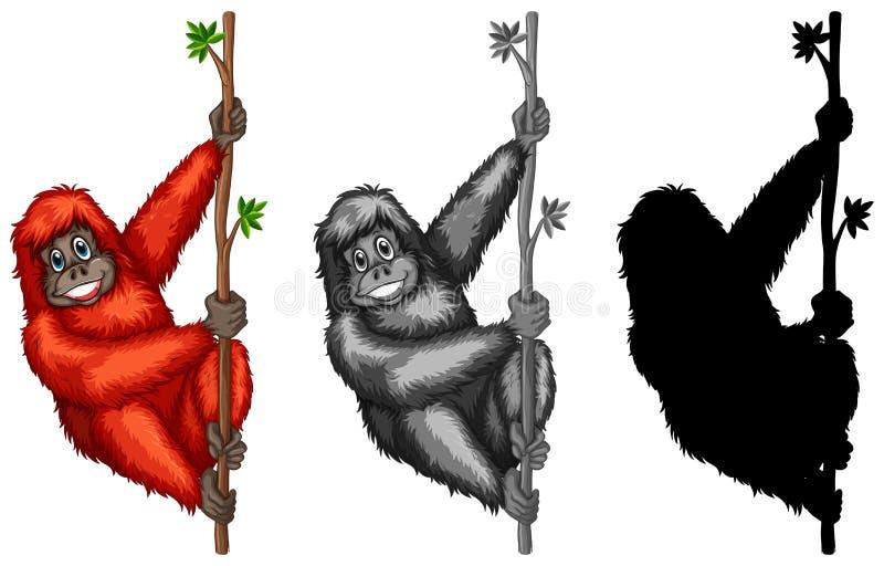 Σύνολο orangutan χαρακτήρα ελεύθερη απεικόνιση δικαιώματος