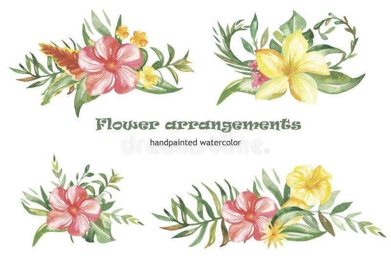 Σύνολο Watercolor στεφανιών και συνθέσεων με τα τροπικές λουλούδια και τις εγκαταστάσεις απεικόνιση αποθεμάτων