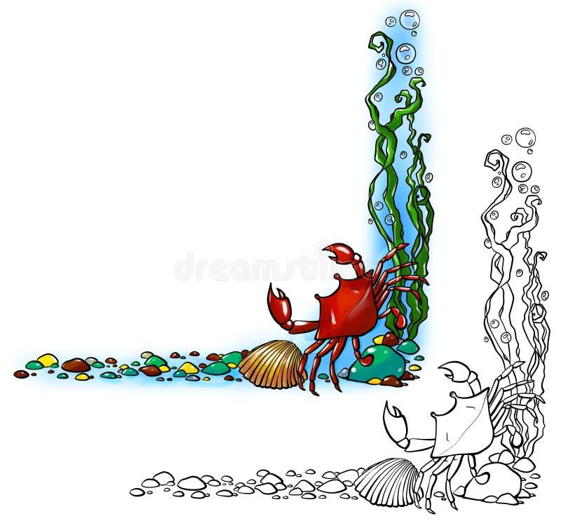 Σύνορα θάλασσας με το καβούρι και το κοχύλι ελεύθερη απεικόνιση δικαιώματος
