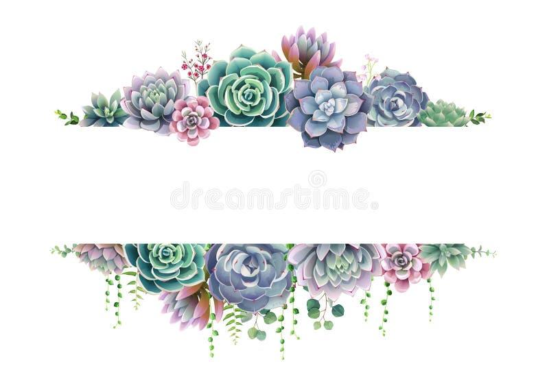 Σύνορα πρασινάδων, succulent και κλάδων πλαισίων στο άσπρο υπόβαθρο Το όμορφο πρότυπο για προσκαλεί ή ευχετήρια κάρτα, έμβλημα Όλ ελεύθερη απεικόνιση δικαιώματος