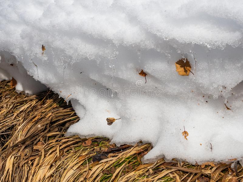 Σύνορα του χειμώνα και της άνοιξης - το στρώμα χιονιού λειώνει, και οι π στοκ φωτογραφία με δικαίωμα ελεύθερης χρήσης