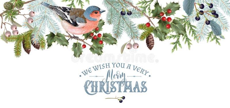 Σύνορα Χριστουγέννων πουλιών ελεύθερη απεικόνιση δικαιώματος