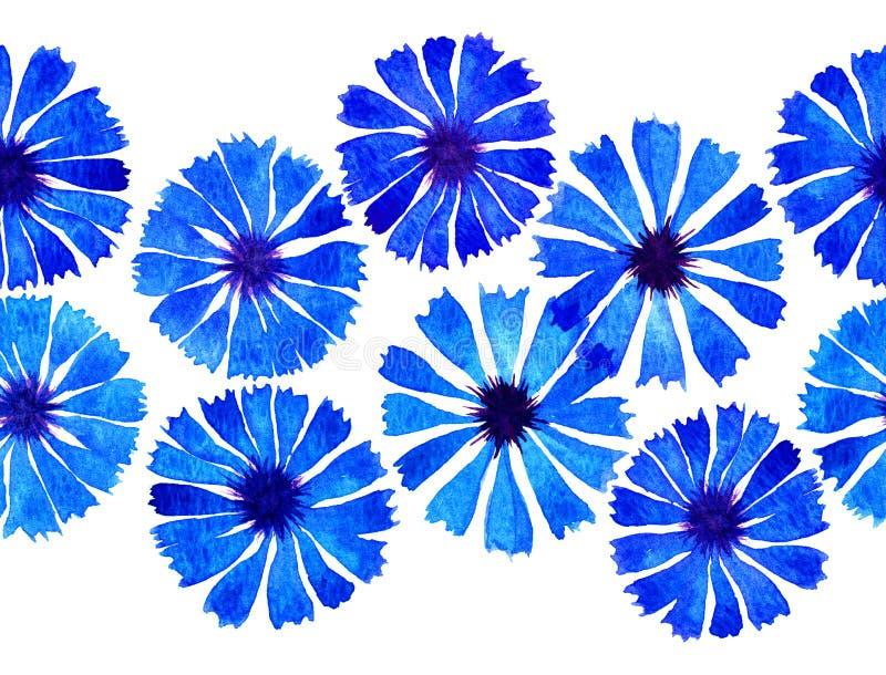 Σύνορα Watercolor cornflower διανυσματική απεικόνιση
