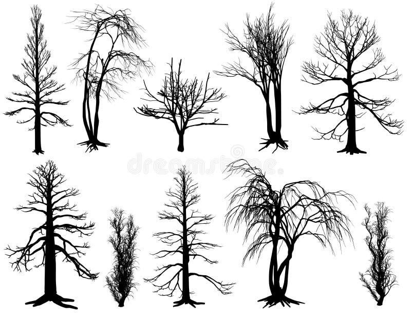 Σύνολο δέντρων ραβδιών στοκ εικόνες