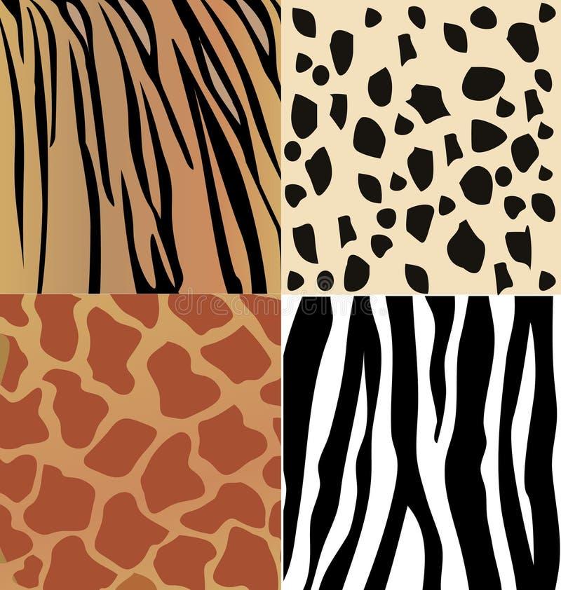 Σύνολο δέρματος άγριων ζώων  ελεύθερη απεικόνιση δικαιώματος