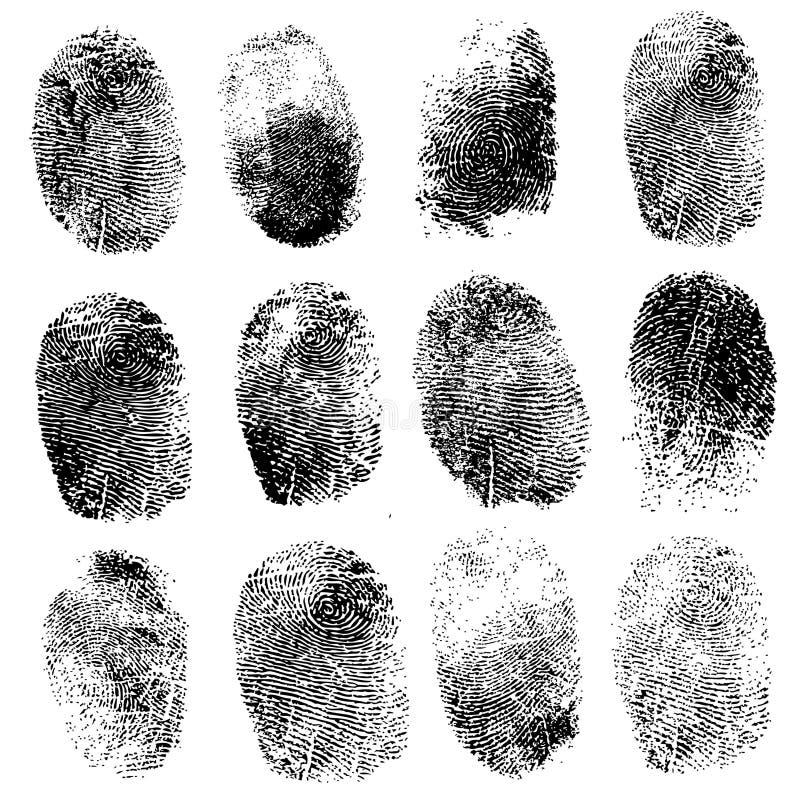 Σύνολο δακτυλικών αποτυπωμάτων, απεικόνιση διανυσματική απεικόνιση