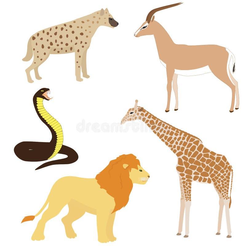 Σύνολο 2 αφρικανικών ζώων κινούμενων σχεδίων ελεύθερη απεικόνιση δικαιώματος
