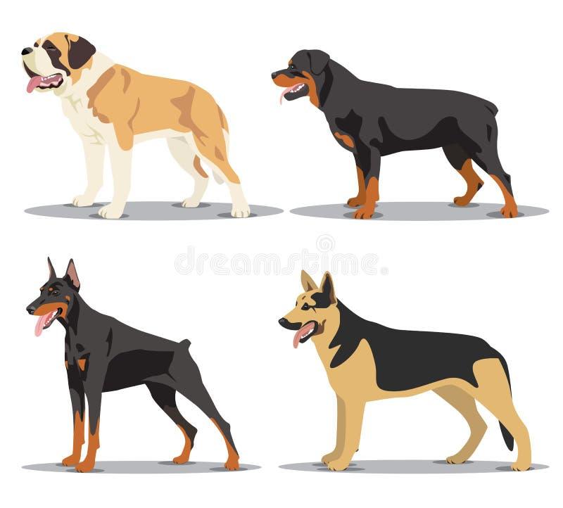Σύνολο εικόνας σκυλιών ελεύθερη απεικόνιση δικαιώματος
