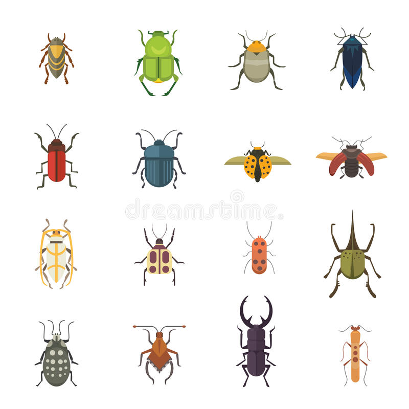Σύνολο εντόμων επίπεδων εικονιδίων σχεδίου ύφους διανυσματικών Κάνθαρος φύσης συλλογής και απεικόνιση κινούμενων σχεδίων ζωολογία απεικόνιση αποθεμάτων