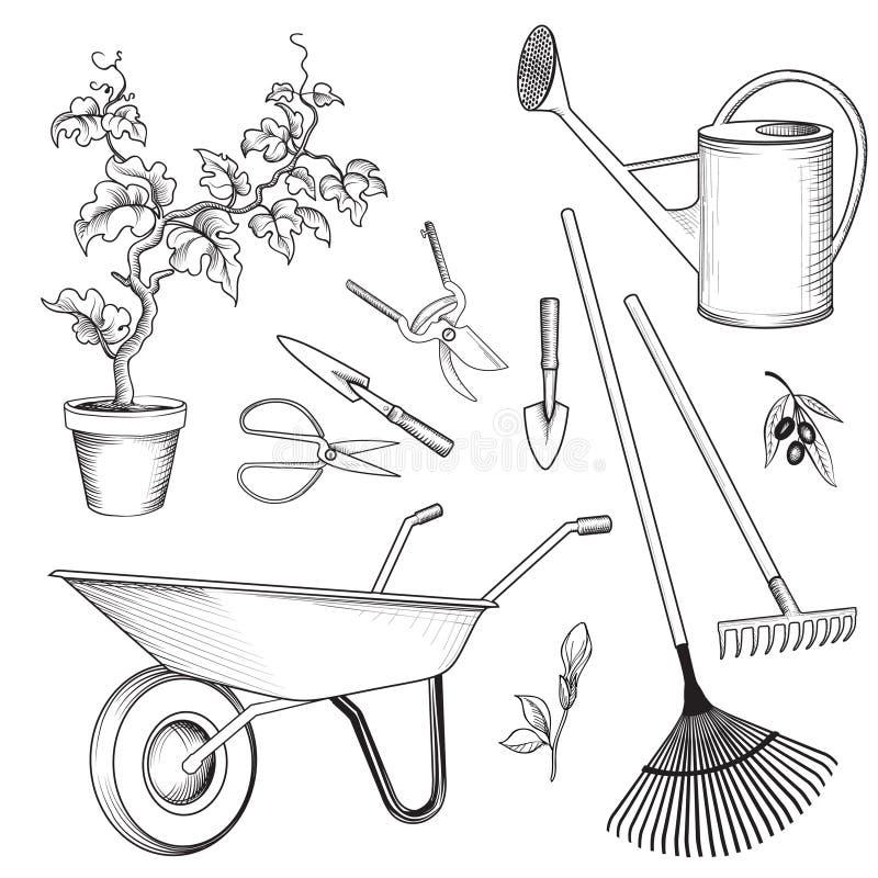 Σύνολο εργαλείων κήπων Οι εγκαταστάσεις κηπουρικής, πότισμα μπορούν, wheelbarrow, RA διανυσματική απεικόνιση