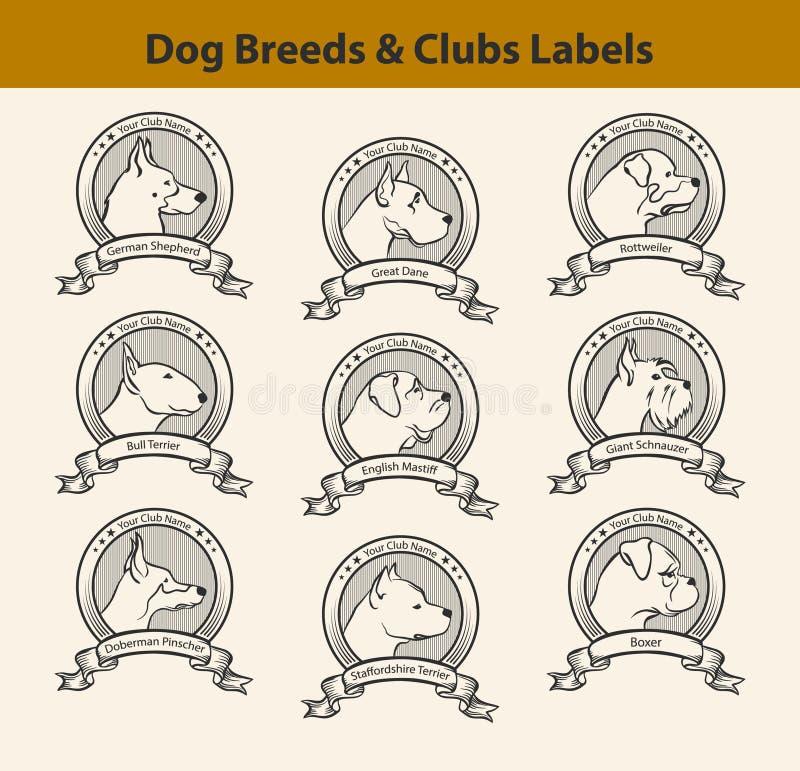 Σύνολο ετικετών φυλών σκυλιών, εμβλήματα λεσχών σκυλιών διανυσματική απεικόνιση