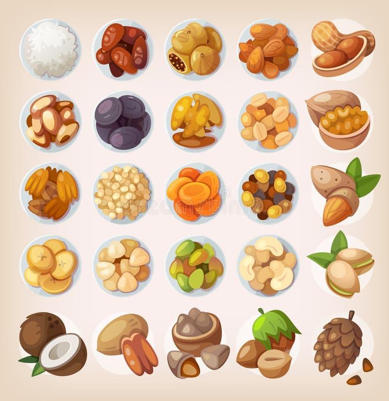 Σύνολο ζωηρόχρωμων φρούτων και καρυδιών διανυσματική απεικόνιση