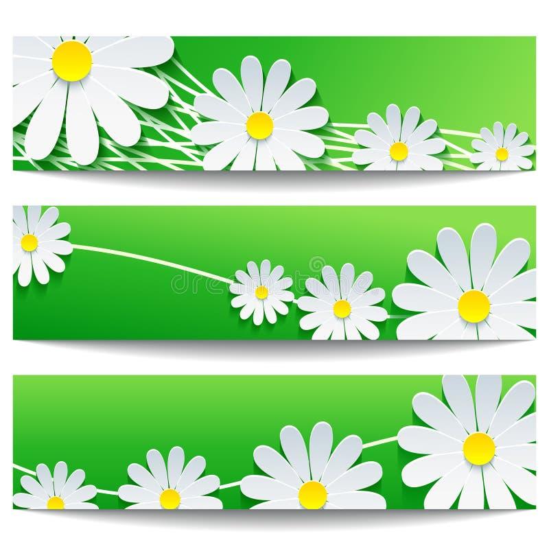 Σύνολο δημιουργικών εμβλημάτων με το άσπρο λουλούδι chamomile διανυσματική απεικόνιση
