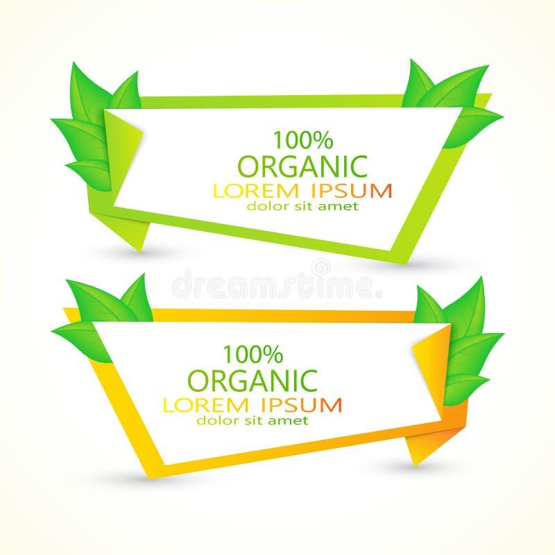 Σύνολο διανυσματικών εμβλημάτων με τα φρέσκα πράσινα φύλλα eco απεικόνιση αποθεμάτων