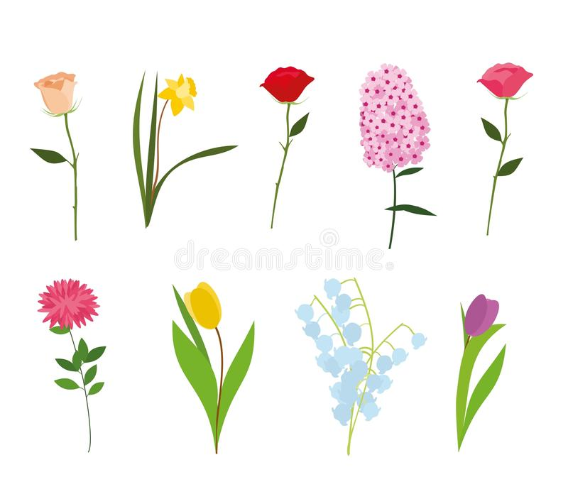 Σύνολο διανύσματος λουλουδιών απεικόνιση αποθεμάτων