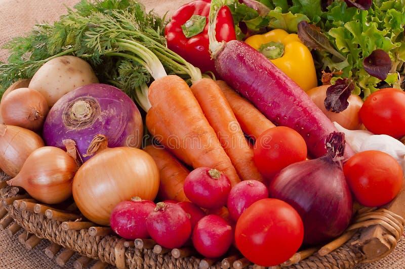 Σύνολο καλαθιών των φρέσκων λαχανικών στοκ εικόνες