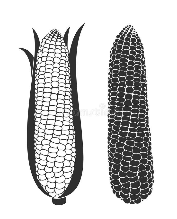Σύνολο καλαμποκιού Απομονωμένο καλαμπόκι στο άσπρο υπόβαθρο διανυσματική απεικόνιση