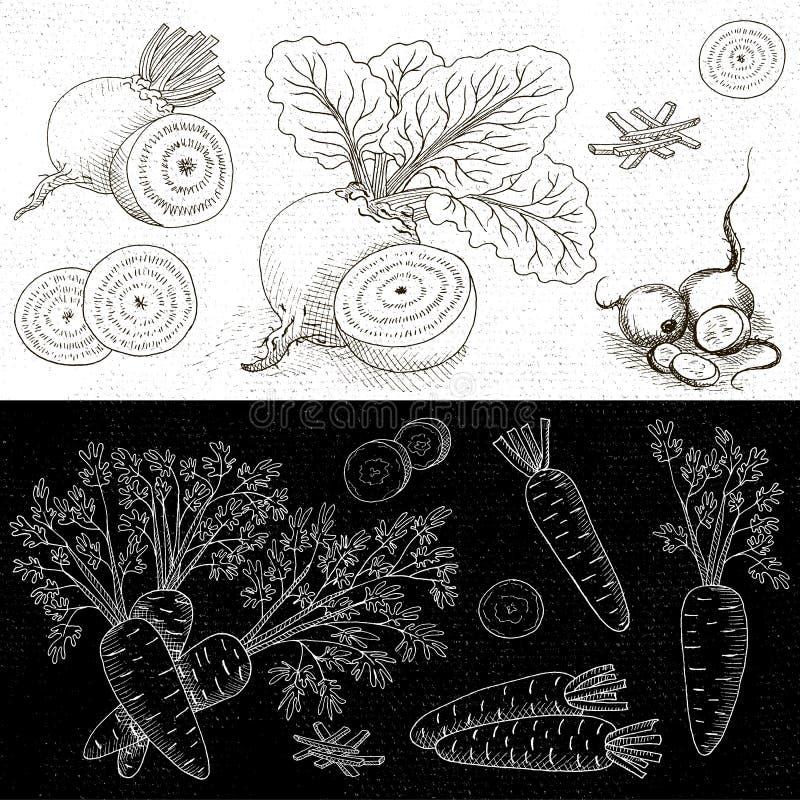 Σύνολο κιμωλίας που επισύρεται την προσοχή σε τρόφιμα πινάκων, καρυκεύματα απεικόνιση αποθεμάτων