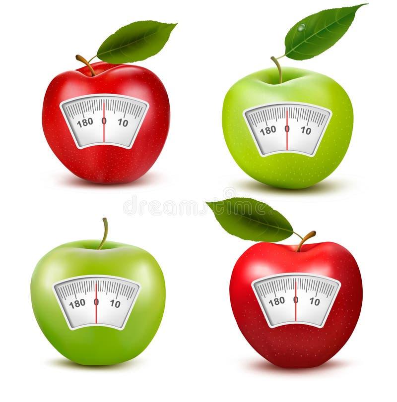 Σύνολο μήλων με μια κλίμακα βάρους. απεικόνιση αποθεμάτων