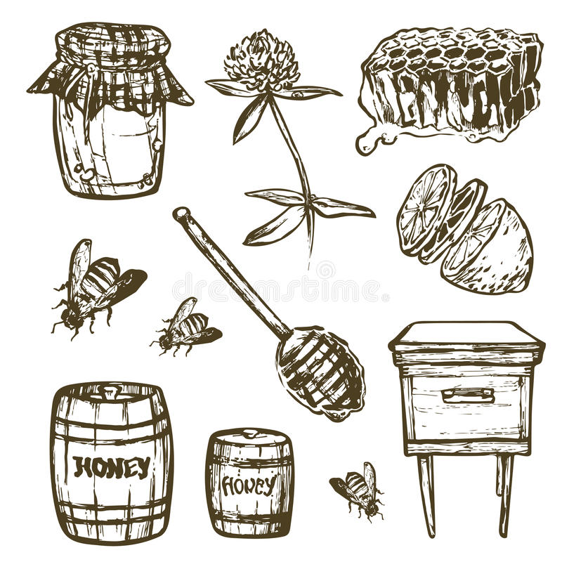 Σύνολο με τα στοιχεία μελιού Βάζο, κουτάλι, ραβδί, κύτταρα, τριφύλλι, κυψέλη, μέλισσα, λεμόνι, βυτίο ελεύθερη απεικόνιση δικαιώματος