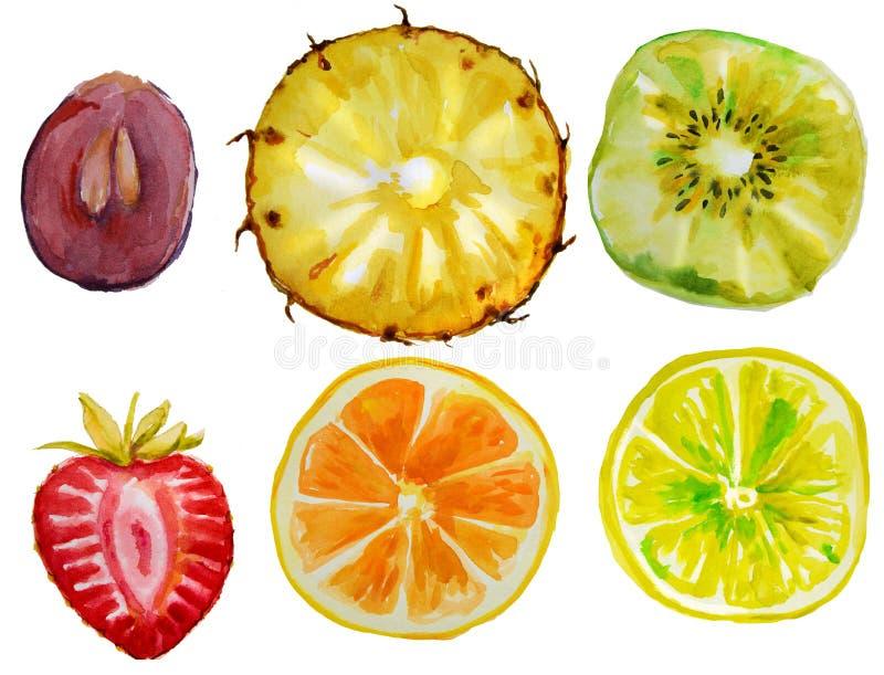 Σύνολο με τα φρούτα watercolor στοκ φωτογραφίες