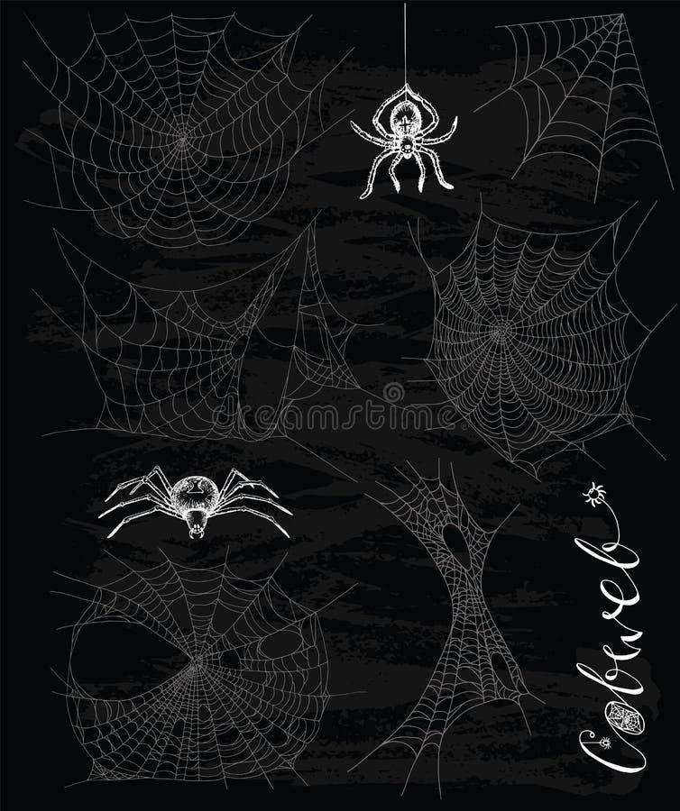 Σύνολο με τις αράχνες και τους ιστούς αράχνης διανυσματική απεικόνιση