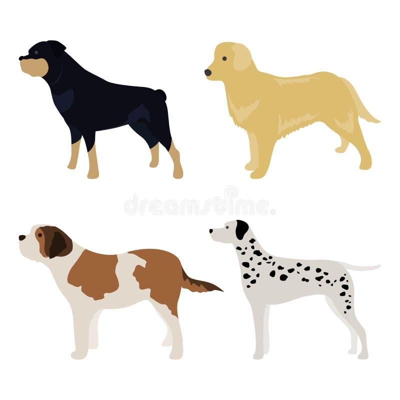 Σύνολο 1 πλάγιας όψης σκυλιών ελεύθερη απεικόνιση δικαιώματος
