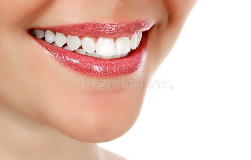 σύνολο σεπιών εικόνας επίδρασης που χαμογελά στην εκλεκτής ποιότητας γυναίκα τόνου στοκ εικόνες με δικαίωμα ελεύθερης χρήσης