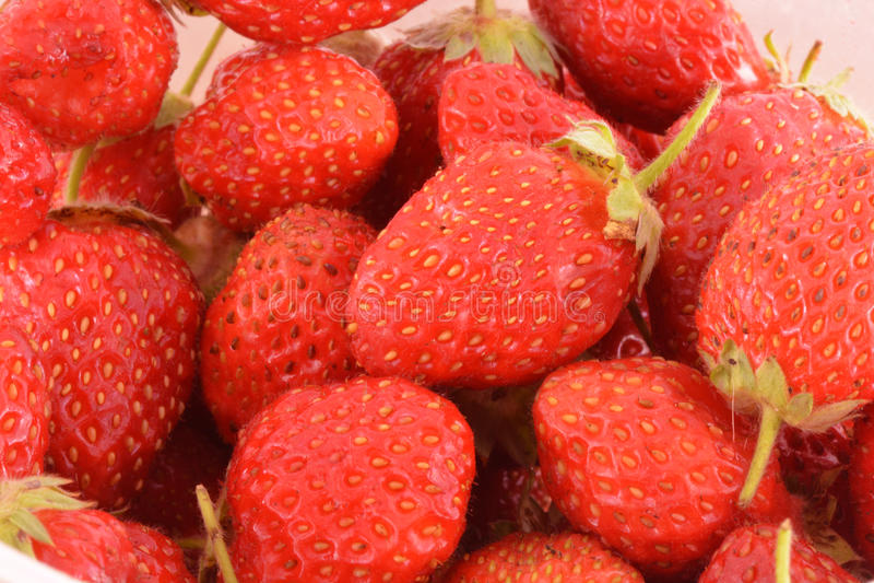 Σύνολο σε ένα κιβώτιο των φραουλών πρίν τρώει στοκ εικόνες