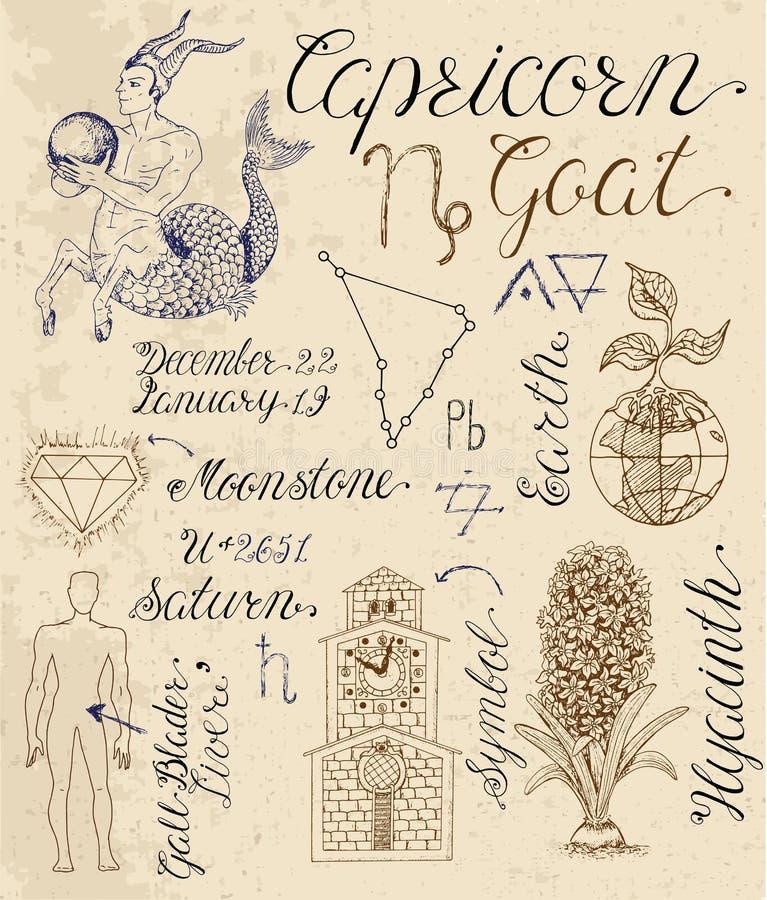 Σύνολο συμβόλων για zodiac το σημάδι Αιγόκερος ή την αίγα ελεύθερη απεικόνιση δικαιώματος