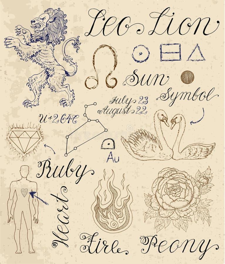Σύνολο συμβόλων για zodiac το signLeo ή το λιοντάρι απεικόνιση αποθεμάτων