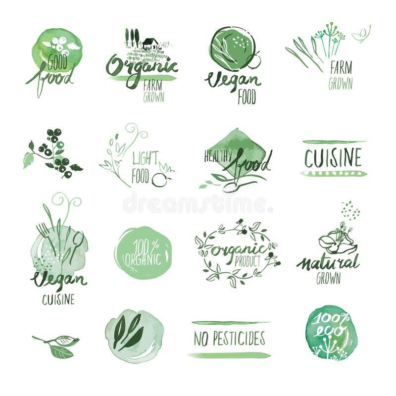 Σύνολο συρμένων ετικετών και διακριτικών watercolor οργανικής τροφής χέρι διανυσματική απεικόνιση
