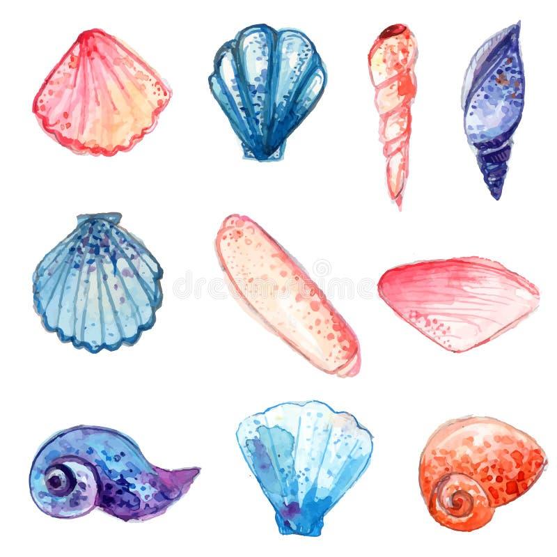 Σύνολο συρμένων χέρι κοχυλιών θάλασσας watercolor Ζωηρόχρωμες διανυσματικές απεικονίσεις που απομονώνονται στο άσπρο υπόβαθρο ελεύθερη απεικόνιση δικαιώματος