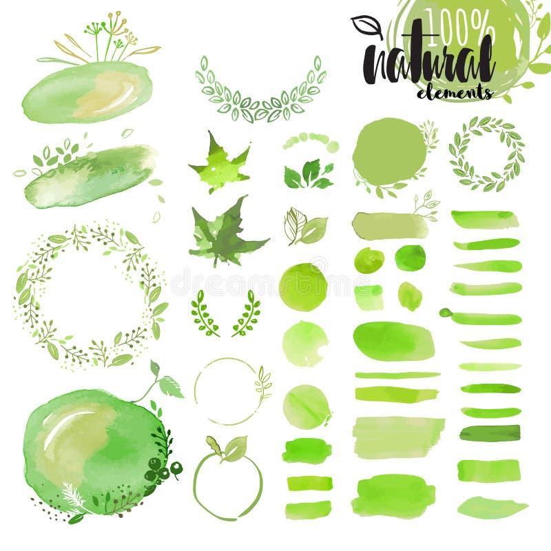 Σύνολο συρμένων χέρι φυσικών στοιχείων watercolor ελεύθερη απεικόνιση δικαιώματος