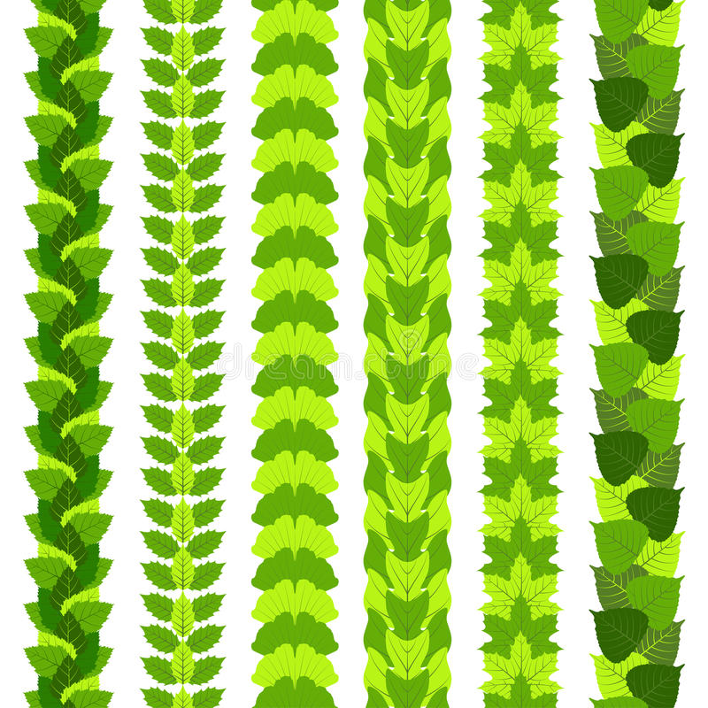 Σύνολο τυποποιημένων συνόρων foliate φιαγμένων από διαφορετικά φύλλα δέντρων, όπως το ginkgo, το δέντρο τουλιπών, η τέφρα, η σημύ ελεύθερη απεικόνιση δικαιώματος